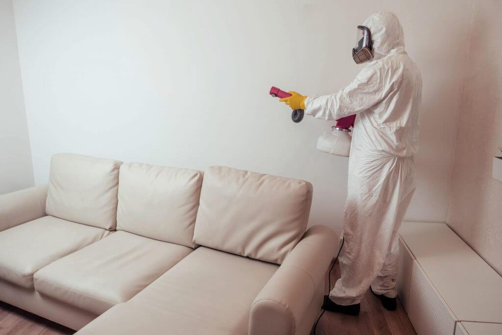 cleaner in hazmat suit fogging living room