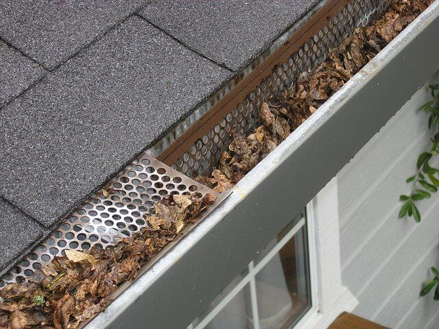 Gutters full of leaves with a gutter guard
